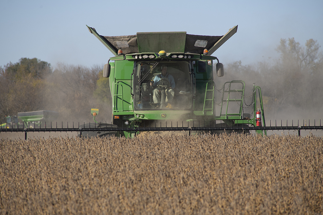 A farmer drives a combine through a field, harvesting s
