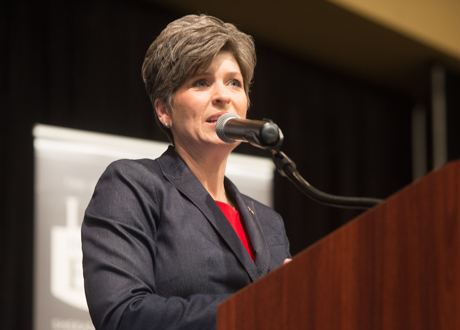 Senator Joni Ernst held a telephone town hall with cons